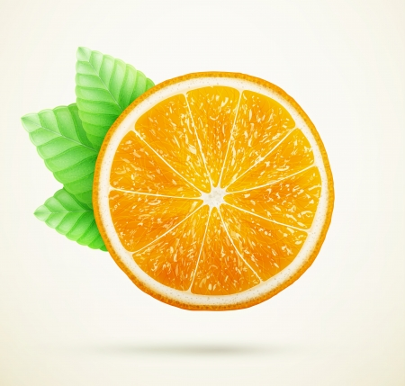 fresh orange with leaves Vector