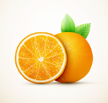 gastronomic: Fresh oranges fruits with green leaves Illustration