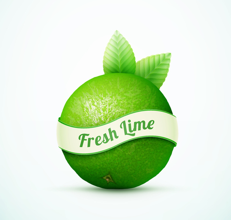 gastronomic: Fresh lime fruit with green leaves