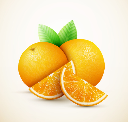 gastronomic: Fresh oranges fruits with green leaves and slices eps10 vector illustration Illustration
