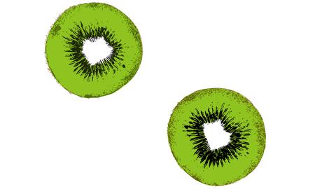 Realistic illustration of kiwi fruit