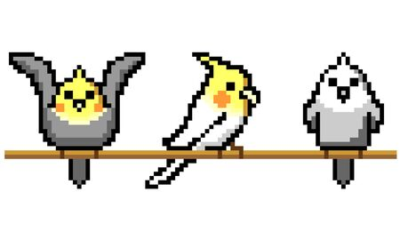 Cockatiel pixel art illustration set