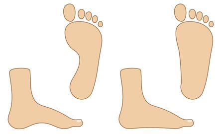 Healthy feet and flat feet illustration set  イラスト・ベクター素材