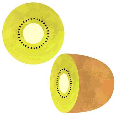 Illustration of kiwifruit cut in half Illustration