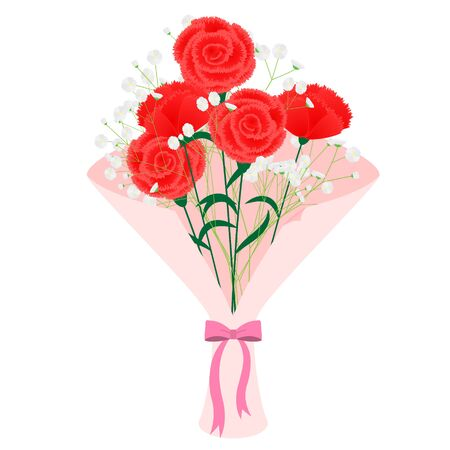 Illustration of a bouquet of carnations and gypsophila