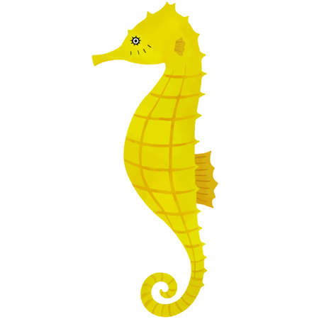 Vector illustration of seahorse on white background