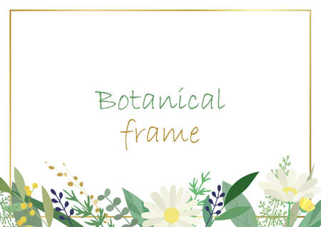Botanical frame illustration. Invitation or greeting card templates (white background, vector, cut out)