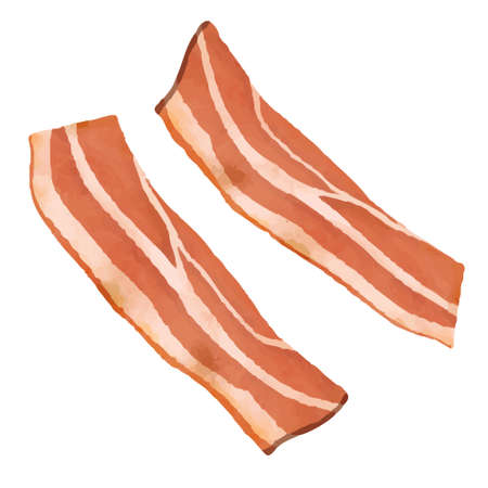 Illustration of bacon (white background, vector, cut out)