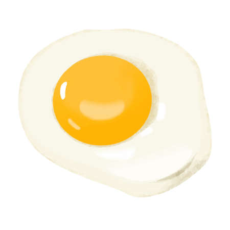 Illustration of fried egg (white background, vector, cut out)