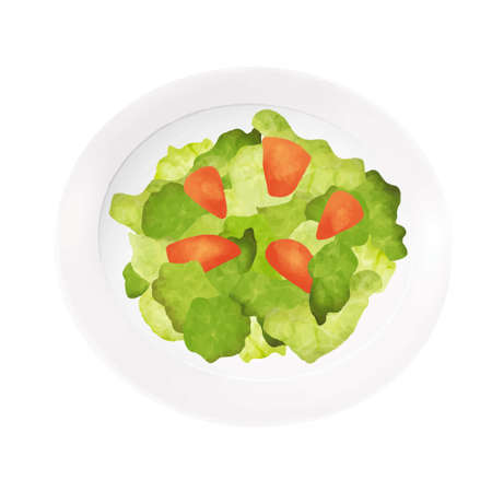 Illustration of salad (white background, vector, cut out)