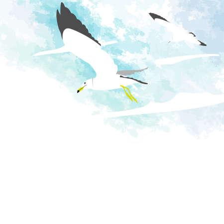 Vector illustration of blue sky with two seagulls flying Vektoros illusztráció