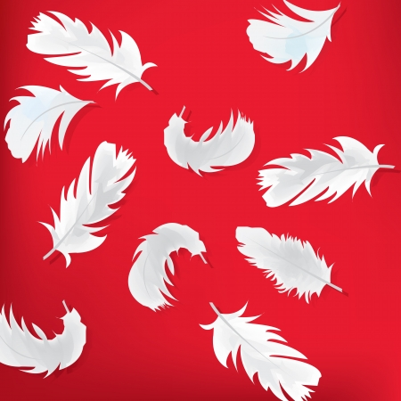 Red abstract background with feathers Illustration