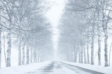 Invierno carretera  Foto de archivo - 54722820