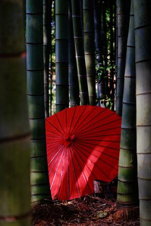 natue: red umbrella