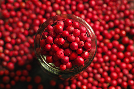 natue: red seed Stock Photo