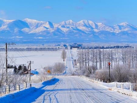 road in winter Фото со стока