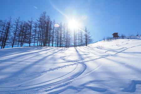 スキー リゾート