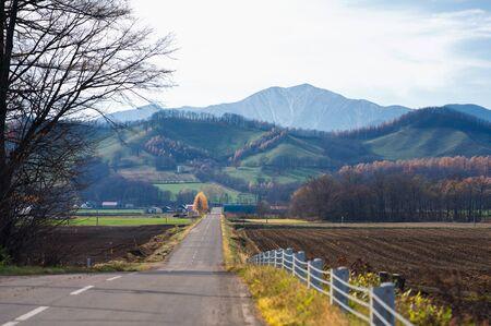 road in autumn hokkaido