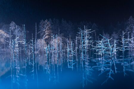 blue pond in night