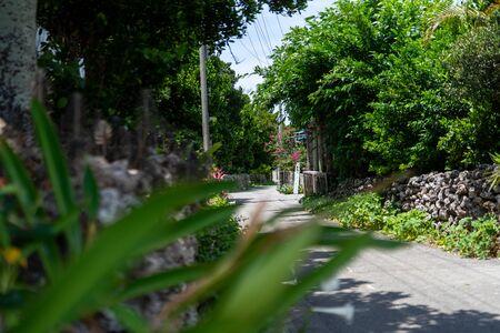 town in hateruma island okinawa Фото со стока