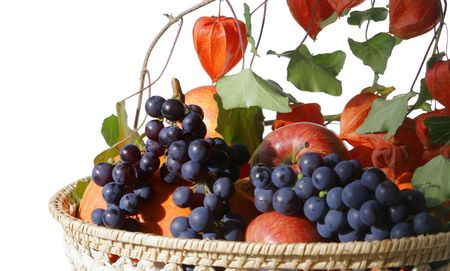 garden harvest in a basket isolated on white Stock Photo - 7242219