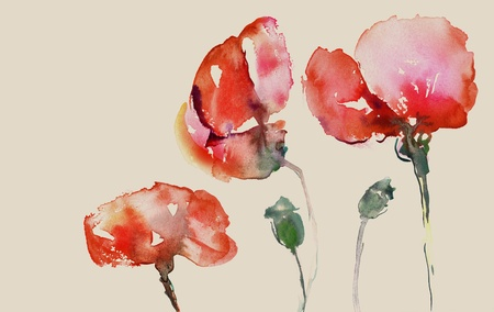 poppies in watercolor on beige background