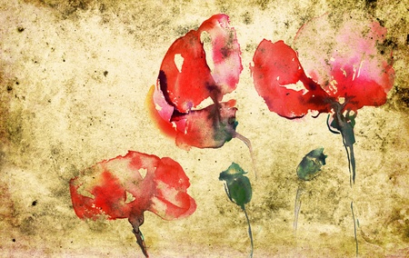 poppies in watercolor on textured background