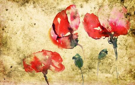gelincikler: poppies in watercolor on textured background