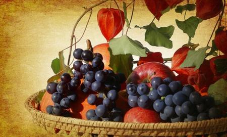 garden harvest in a basket on old background grunge Stock Photo - 10000407