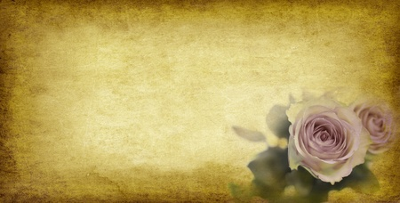 grunge textures: vintage paper background with roses - old paper grunge Stock Photo