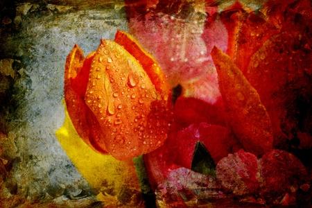 vintage achtergrond collage - tulpen van dichtbij met waterdruppels