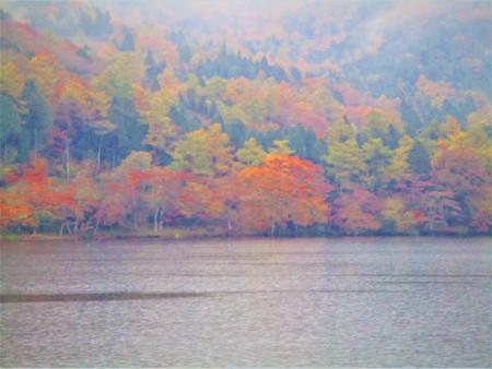 秋の雨の日