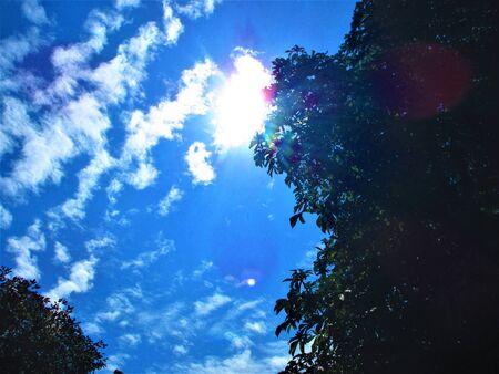 Blue skies of autumn