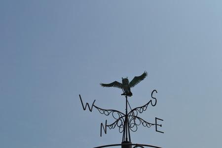 コンパスとフクロウのオブジェクト 写真素材