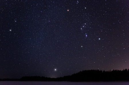 Orion and Canis Minor constellations and Sirius above horizon on a cold winter night.