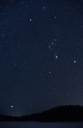Orion constellation and Sirius rising above horizon on a cold winter night. 免版税图像