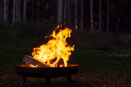 Campfire in a firebowl, autumn evening, birch forest in the background Stok Fotoğraf