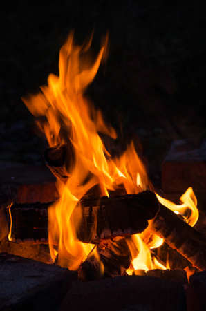 Burning campfire on a dark night