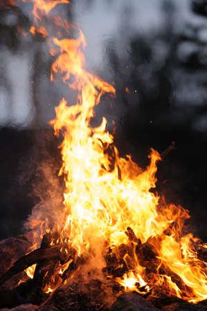 Burning campfire on a dark night Stock Photo