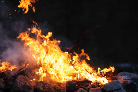 Burning campfire on a dark night Archivio Fotografico