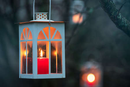 Lanterns hanging from tree branches, blurred bokeh background. Stockfoto
