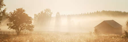 Autumn rural landscape, fog lingering over meadow in the morning at sunrise