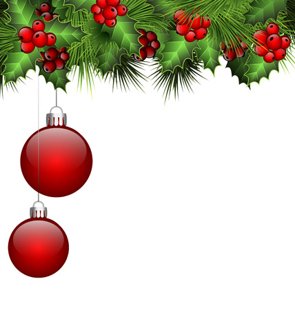 Holly sprigs and fir branches with two red Christmas balls isolated on white background Vector