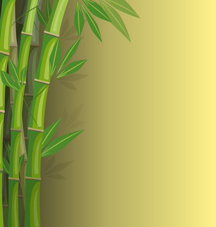 Green bamboo on yellow background with shadows Vector