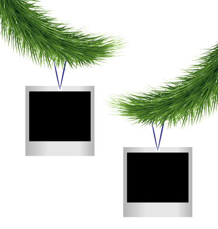 Two blank photoframes hanging on green pine branches isolated on white background