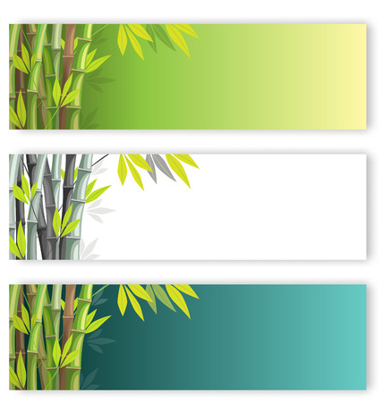Bamboo flyers set on different colors backgrounds photo