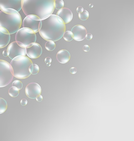 bleb: Transparent iridescent soap bubbles on grayscale background