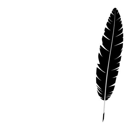 respectfully: Black single feather isolated on white background