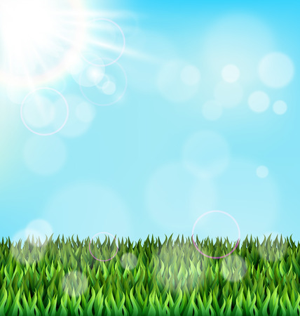 grass lawn: Green grass lawn with sunlight on blue sky. Floral nature spring background Illustration