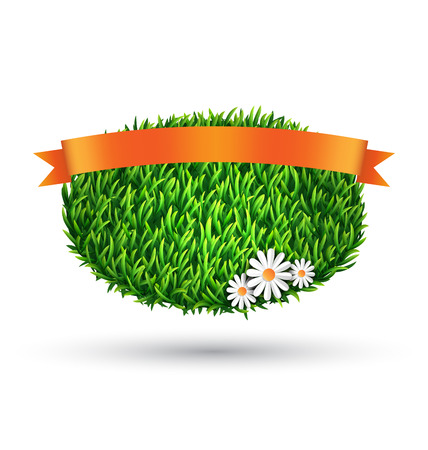 chamomiles: Green grass oval with chamomiles and flag isolated on white background Stock Photo